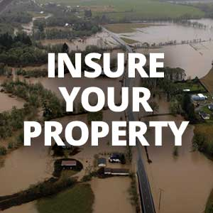 Insure your property
